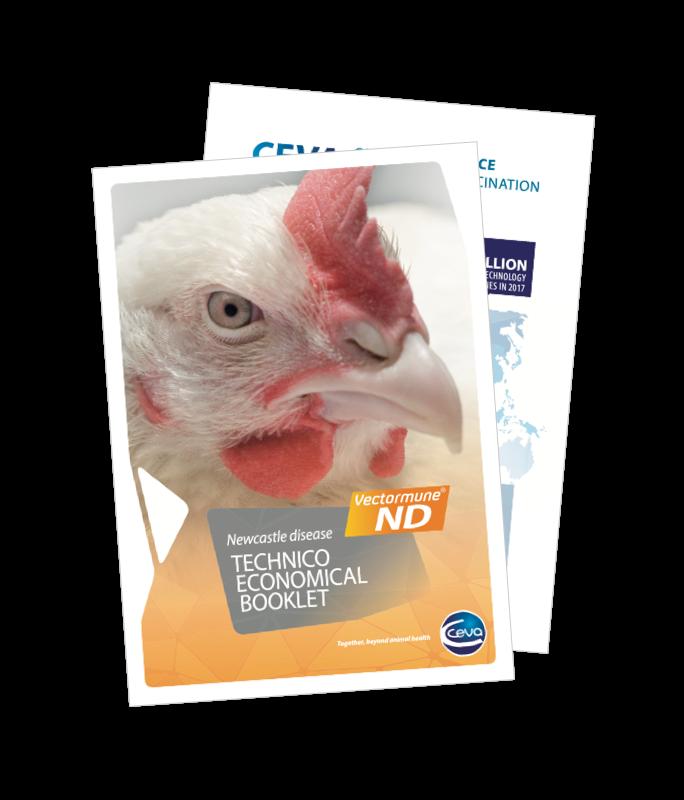 img-transmune-guide-newcastle