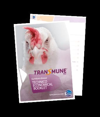img-transmune-guide
